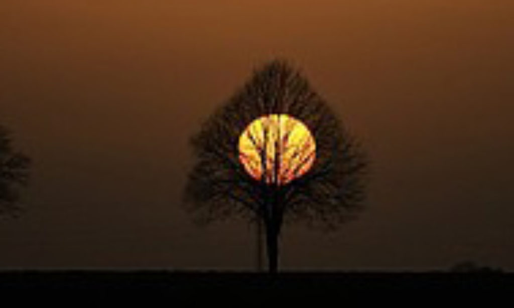 Lampy solarne, czyli Słońce, które świeci nocą