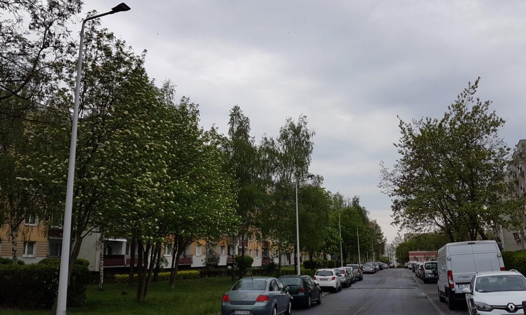 Ocena efektywności energetycznej zasilaczy do LED w ujęciu rozporządzenia UE 2019/2020