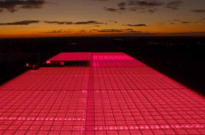 VegaPOL-Budyta rozszerza uprawę pomidora malinowego z zastosowaniem technologii Philips LED do 5 ha